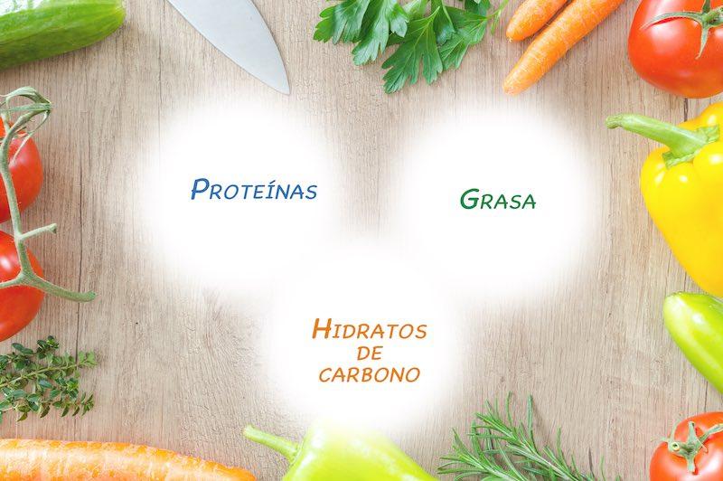 Proteinas grasa hidratos de carbono